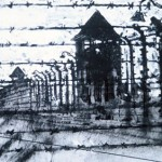 Perimeter fence. Auschwitz-Birkenau.5.30pm Sun 4 May 97 A4 Mixed media