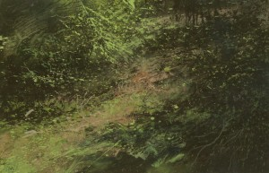 Fr-S31 Undergrowth in the Forest of Fontainebleau. Size A4 (21x30cm) Media Gouache.  SOLD