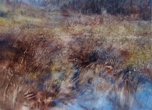 Sc-M06. Marshy Ground in Glen Nevis. Size A1 60x84cm. Media Oil.