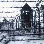 Perimeter fence. Auschwitz-Birkenau.5.30pm Sun 4 May 97 A4 Mixed media