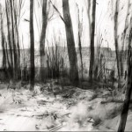 High Wood with Bazentin Ridge. Somme. 6.15pm 21 Feb 2001. A2 Charcoal-ink
