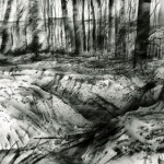 Trenches in Aveluy Wood. Somme. 4.45pm. 3 Feb 2001. A3 Charcoal-ink