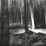 Lamp-lit trenches in Aveluy Wood. Somme. 10.35pm 15 Feb 2001. A2 Charcoal-ink
