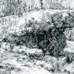 Infantry Shelter Abri DV2,Verdun. 2.45pm Tue 27 Feb 2001. A3. Charcoal-graphite-ink.