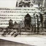 Perimeter Fence, Auschwitz-Birkenau.   5.30pm, 4 May 1997. A4. Ink/gouache over photocopy.