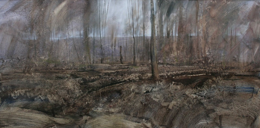 S.00.48x96in-02 (S,62)  (LR)   Trenches in Aveluy Wood 4.40pm 7 Feb 200.  During the Battle of the Somme, the 32nd and 36th Divisions were based here